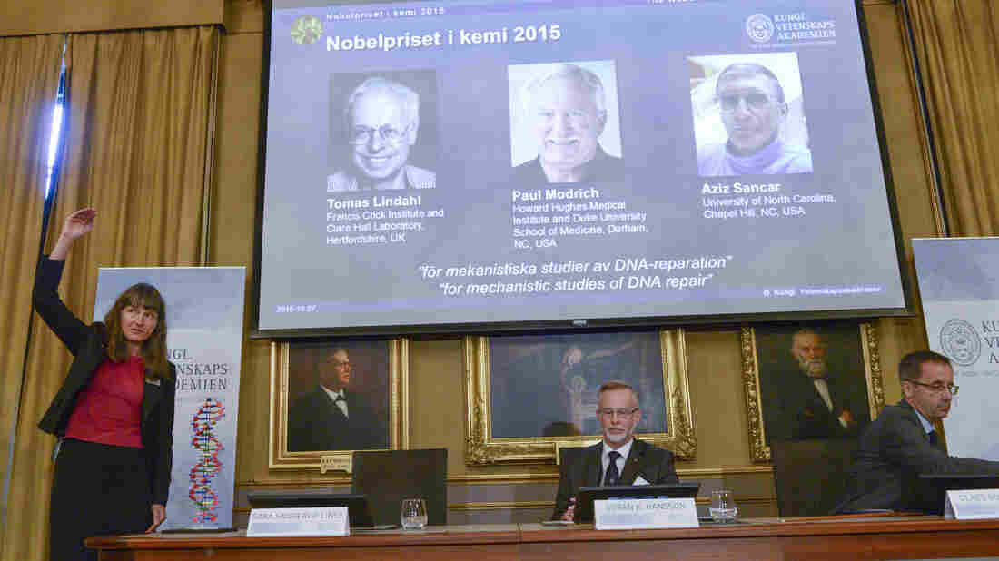 "Professor Sara Snogerup Linse (left) explains the work that won the 2015 Nobel Prize in Chemistry, won by Sweden's Tomas Lindahl, American Paul Modrich and U.S.-Turkish scientist Aziz Sancar on Wednesday. The three worked on ""mechanistic studies of DNA repair."""