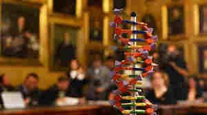 3 Scientists Win Nobel Prize In Chemistry For DNA Repair Research