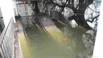 Escalators to the South Ferry subway station in Manhattan flooded in October 2012 by Superstorm Sandy.