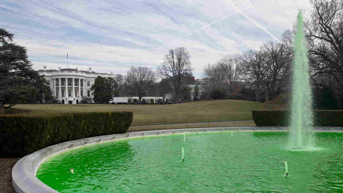 On St. Patrick's Day this year, the fountain on the South Lawn of the White House was dyed green, as a testament to the special relationship shared between Ireland and the U.S. An estimated 50,000 unauthorized Irish are in the U.S. today.