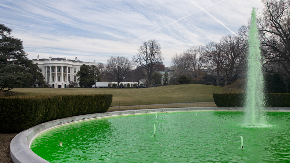 On St. Patrick's Day this year, the fountain on the South Lawn of the White House was dyed green, as a testament to the special relationship shared between Ireland and the U.S. An estimated 50,000 unauthorized Irish are in the U.S. today. (Jacquelyn Martin/AP)