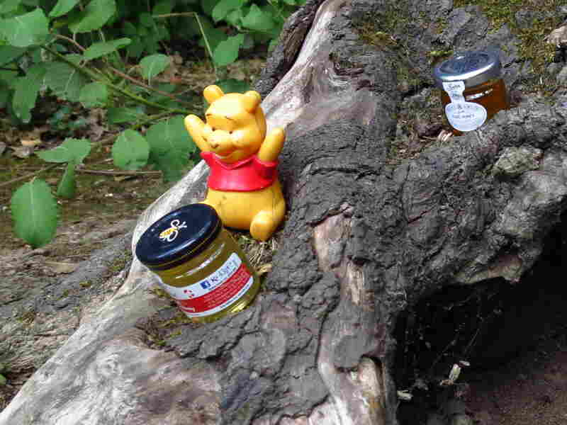 Visitors leave presents for Winnie the Pooh in Ashdown Forest.