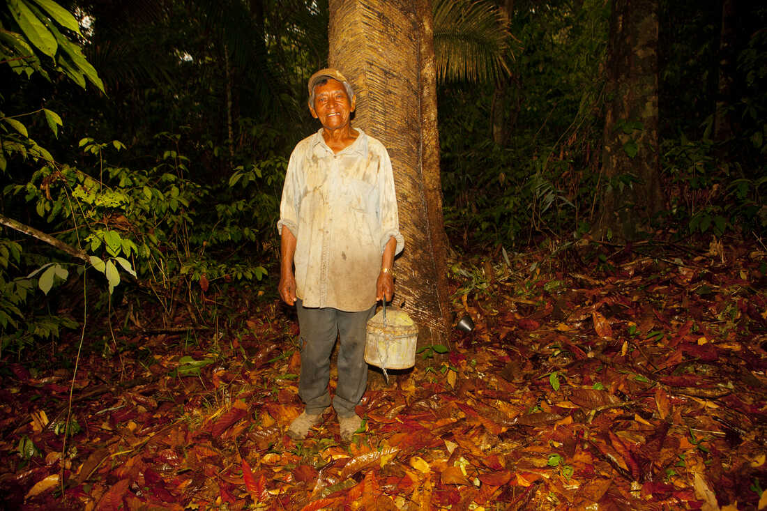 Antônio da Silva, 88, has been a rubber tapper most of his life. rubber tappers like him are granted the right to sustainably extract their livelihood from the forest.