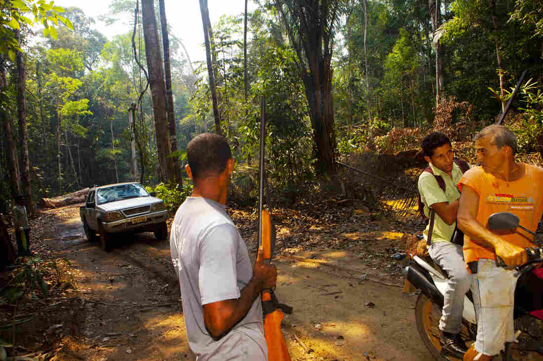 Elizeu Berçacola and crew are on an illegal logging road that they hope will lead to the loggers' camp.