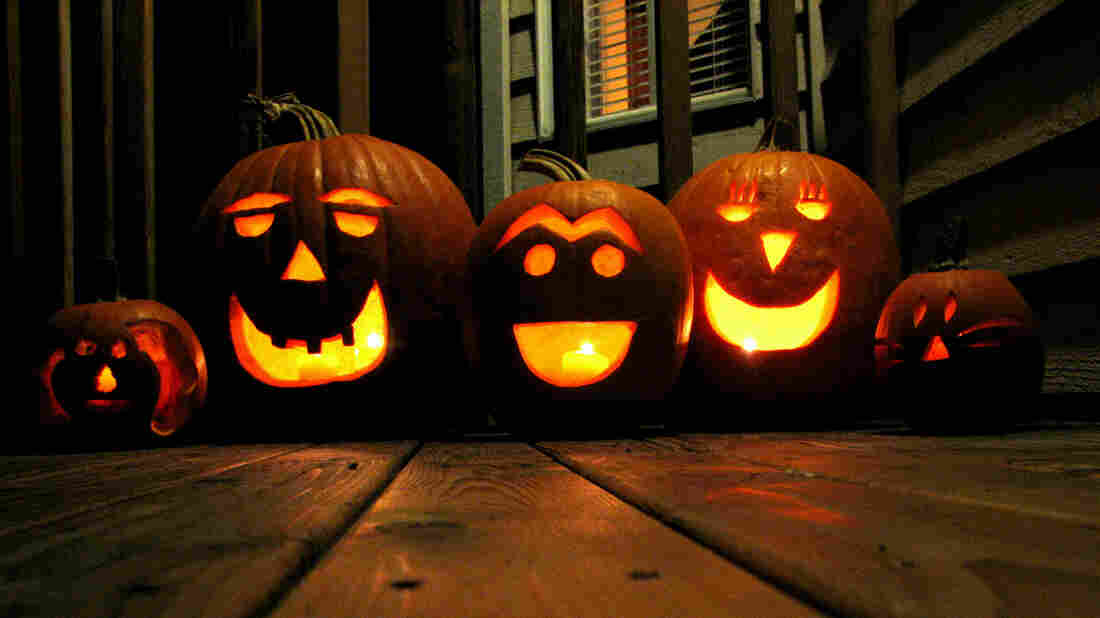 You probably wouldn't want to eat these Jack O'Lanterns since they've been carved and sitting out. But this variety of pumpkin is perfectly edible and nutritious.