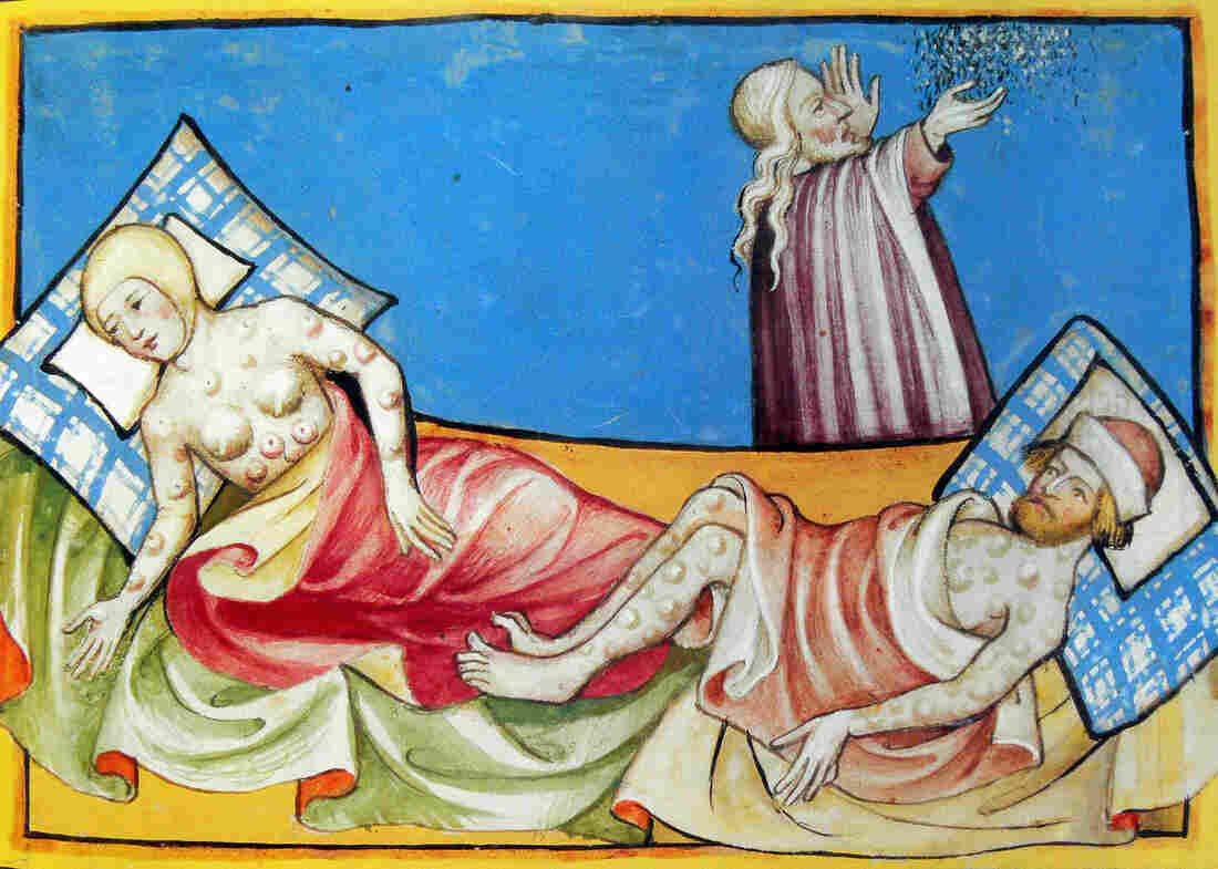 "A 15th-century Bible depicts a couple suffering from the blisters of the bubonic plague. The same bacterium that ravaged medieval Europe as the ""black death"" occasionally re-emerges."