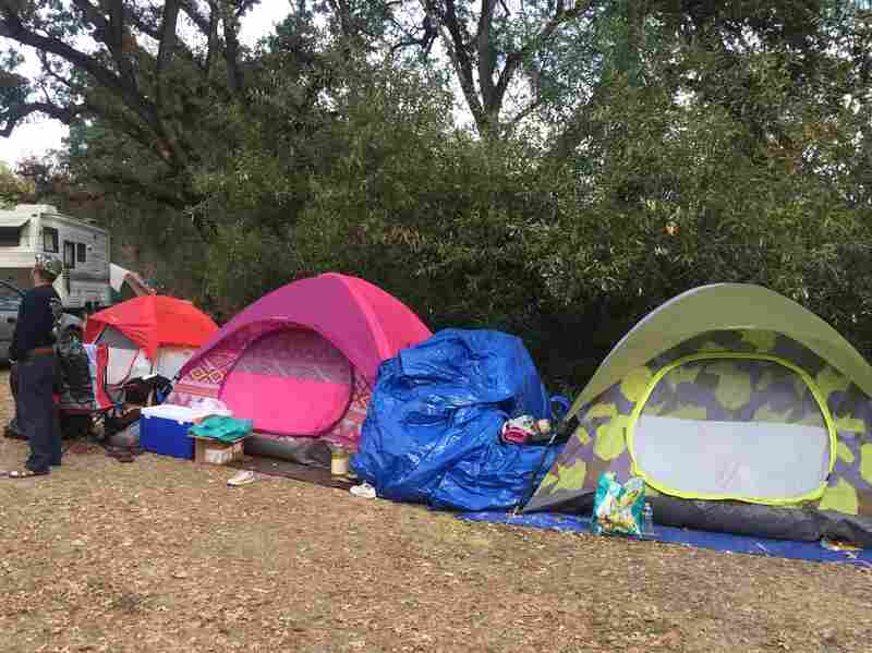 Homeless fire victims live in tents like these in Middletown, Calif. Patricia Madrigal's tent is yellow and gray.