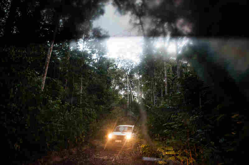 The convoy drives deep into the reserve looking for signs of illegal logging.