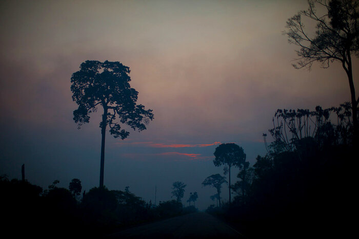 Sunset colors cut through the smoky haze in the Brazilian Amazon. (Kainaz Amaria/NPR)