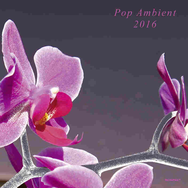 Cover art for Pop Ambient 2016.