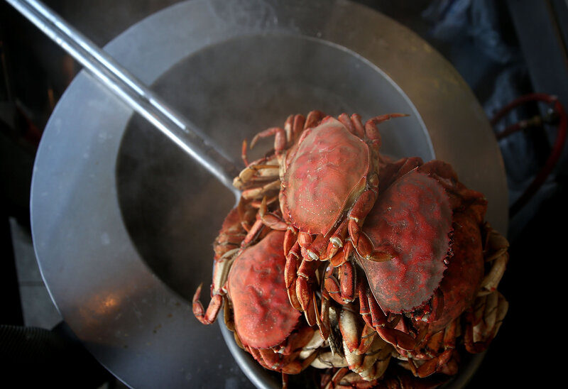 Why A Neurotoxin Is Closing Crab Season In California : The