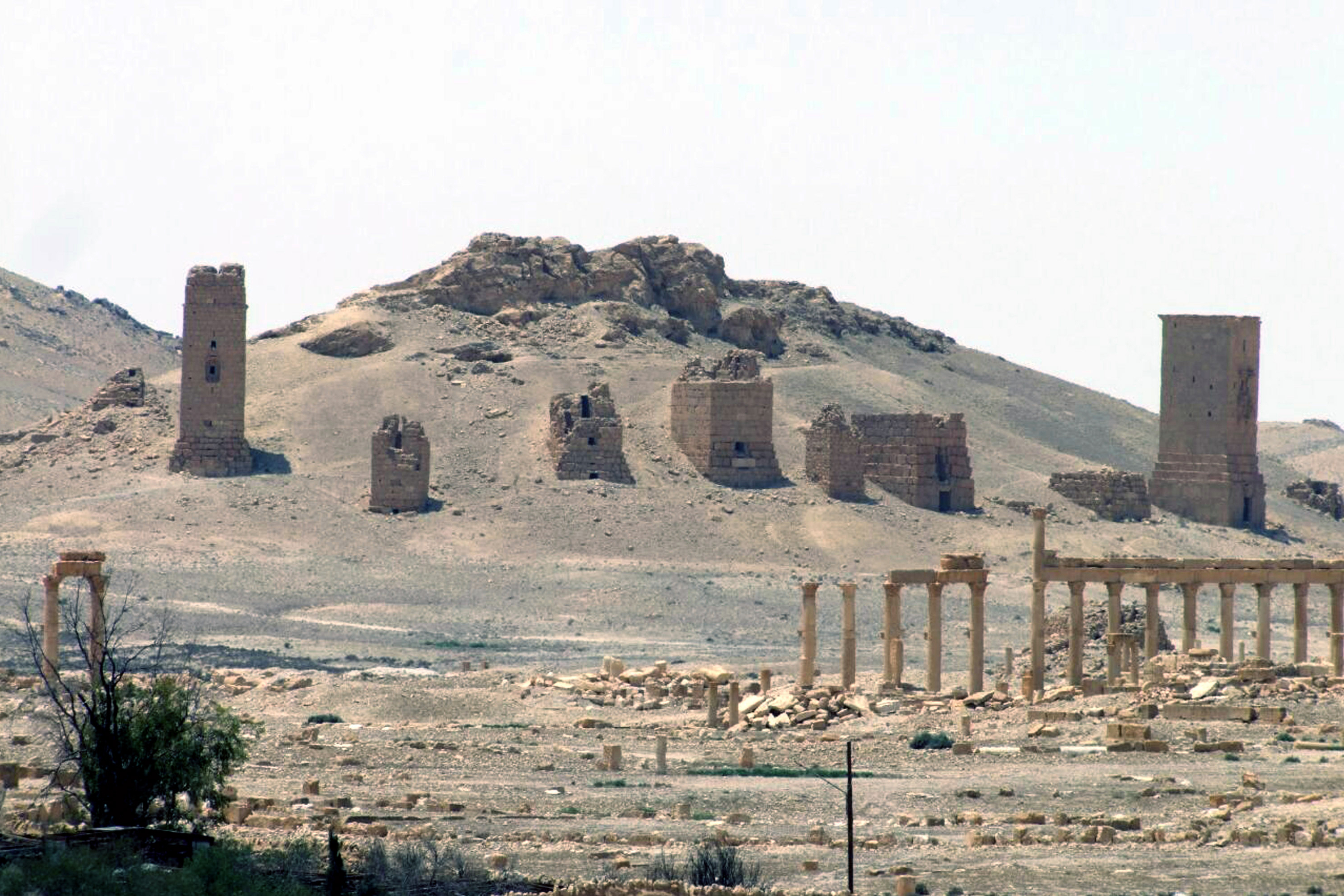 Syrian Antiquities Chief Calls For Help From International Community