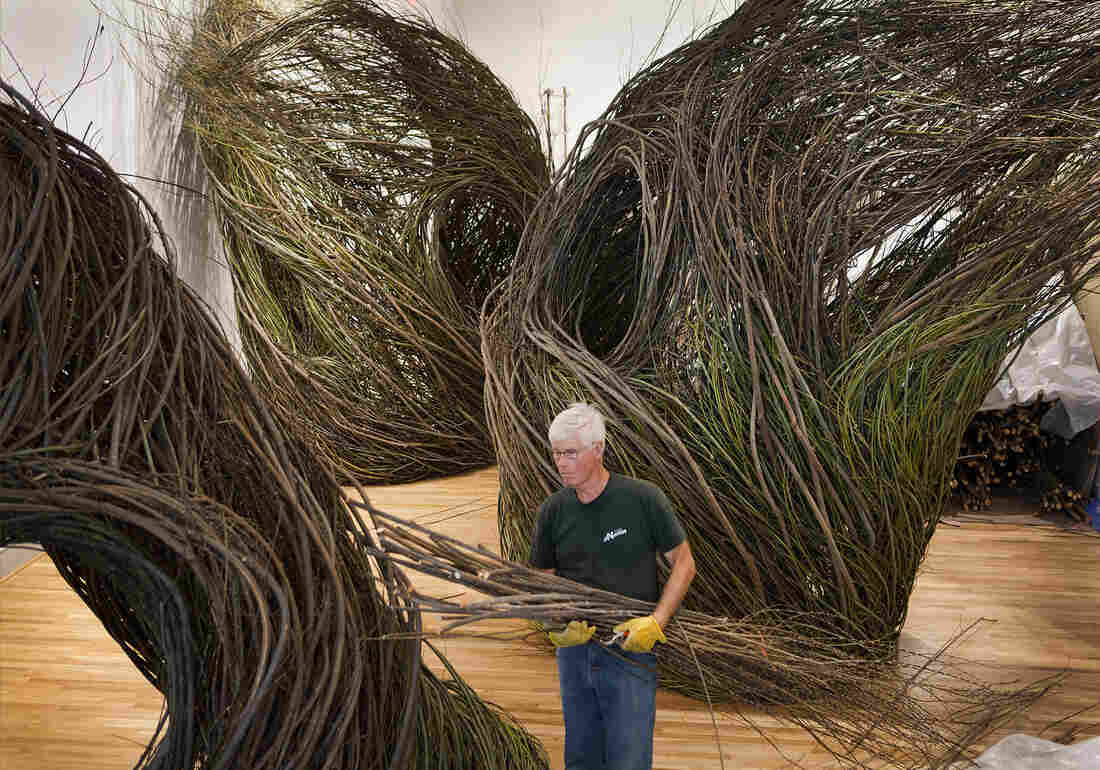 Stick sculptor Patrick Dougherty creates nests in his 2015 work Shindig.