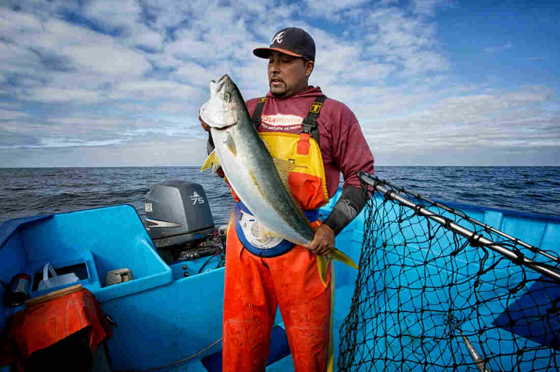 A traditional fisherman in La Paz, Mexico, who works with SmartFish brings sustainable seafood to market. SmartFish was one of the competitors in last week's Fish 2.0 competition.