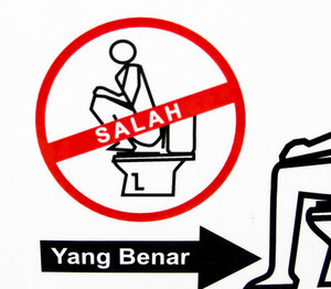 Signs On The World\'s Flush Toilets Teach Toilet Etiquette To Those ...