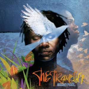 The Traveller cover.