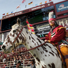 """Osceola"" stands in front of a crowd at the FSU homecoming game."