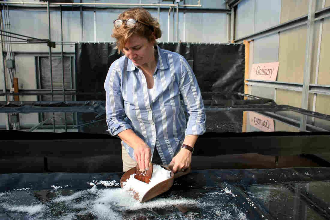 Nancy Bruns, CEO of J.Q. Dickinson Salt-Works, gathers finished salt from an evaporation table in Malden, W.Va.