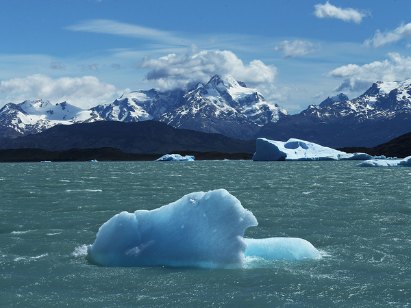 A piece of ice floats in Los Glaciares National Park in Santa Cruz province, Argentina.