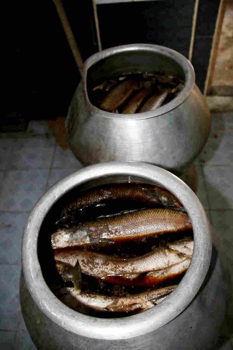 Myaungmya Daw Cho in Yangon buys catfish for its mohinga from local farms in the Irrawaddy Delta. It is first soaked for half an hour in a fermented fish sauce in large pots.