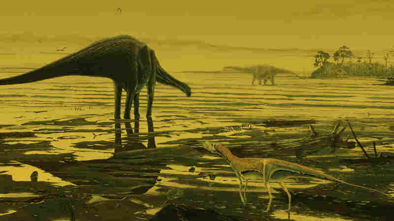 Before There Were Tourists, Dinosaurs Strolled Scotland's Isle Of Skye