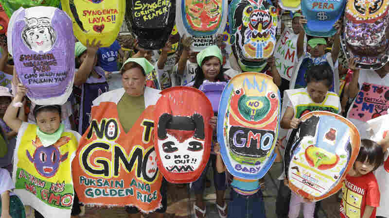 """The """"Green Moms"""" group displays painted baby tubs during a June 2013 protest in Quezon, Philippines, showing opposition to the genetically modified rice variety """"golden rice,"""" which proponents promote as a solution to Vitamin A deficiency."""