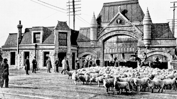 The famed architectural firm Burnham and Root designed the iconic entranceway to the Union Stock Yard in 1879. It quickly became the symbol of the market and the meat industry in Chicago.