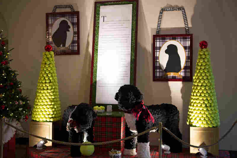 Large sculptures of Sunny and Bo made from yarn pompoms are on display along with tennis ball topiaries in the East Garden room.