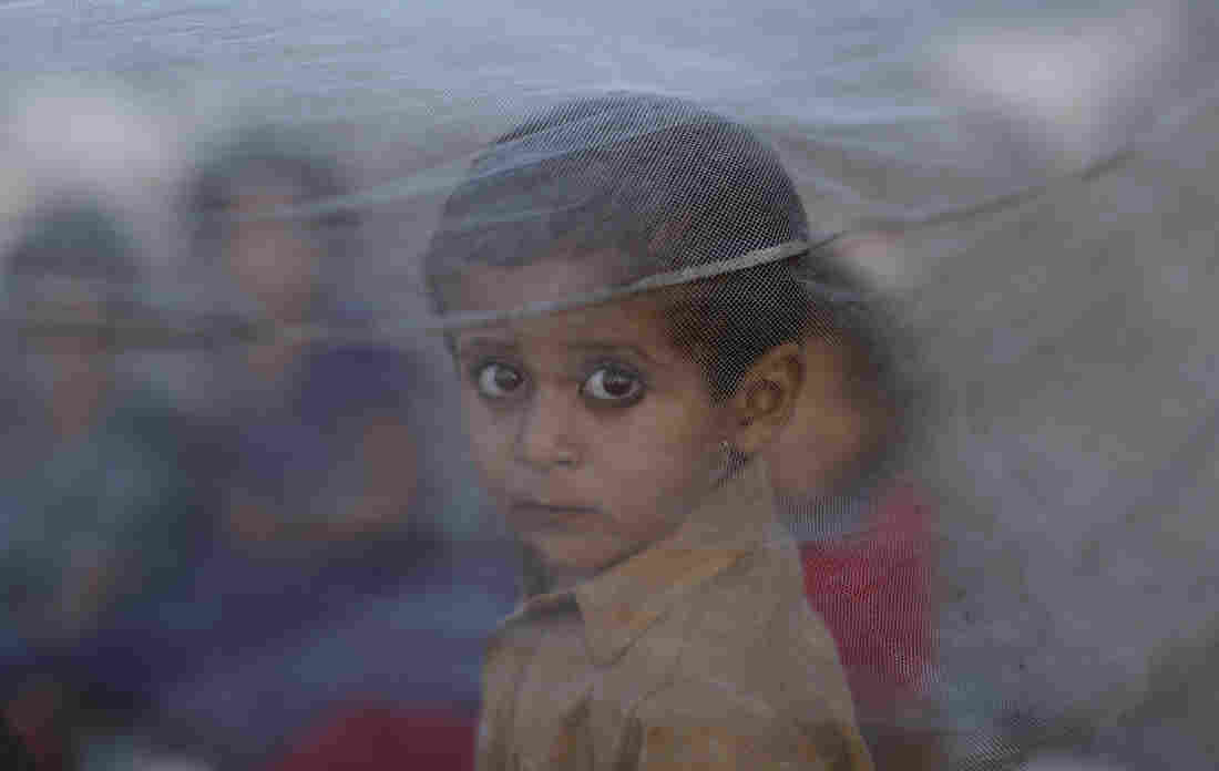 A Pakistani boy peers out from behind a mosquito net after his family fled their home due to catastrophic flooding in Sindh province.