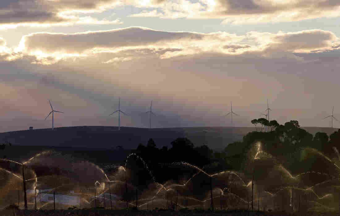 Wind turbines outside Caledon in Cape Town, South Africa. Solar and wind farms are filling in the gaps during power shortages.