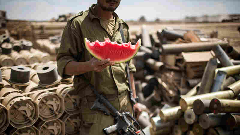 As More Israelis Go Vegan, Their Military Adjusts Its Menu