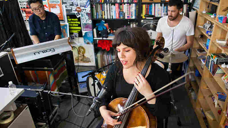 Land Lines: Tiny Desk Concert