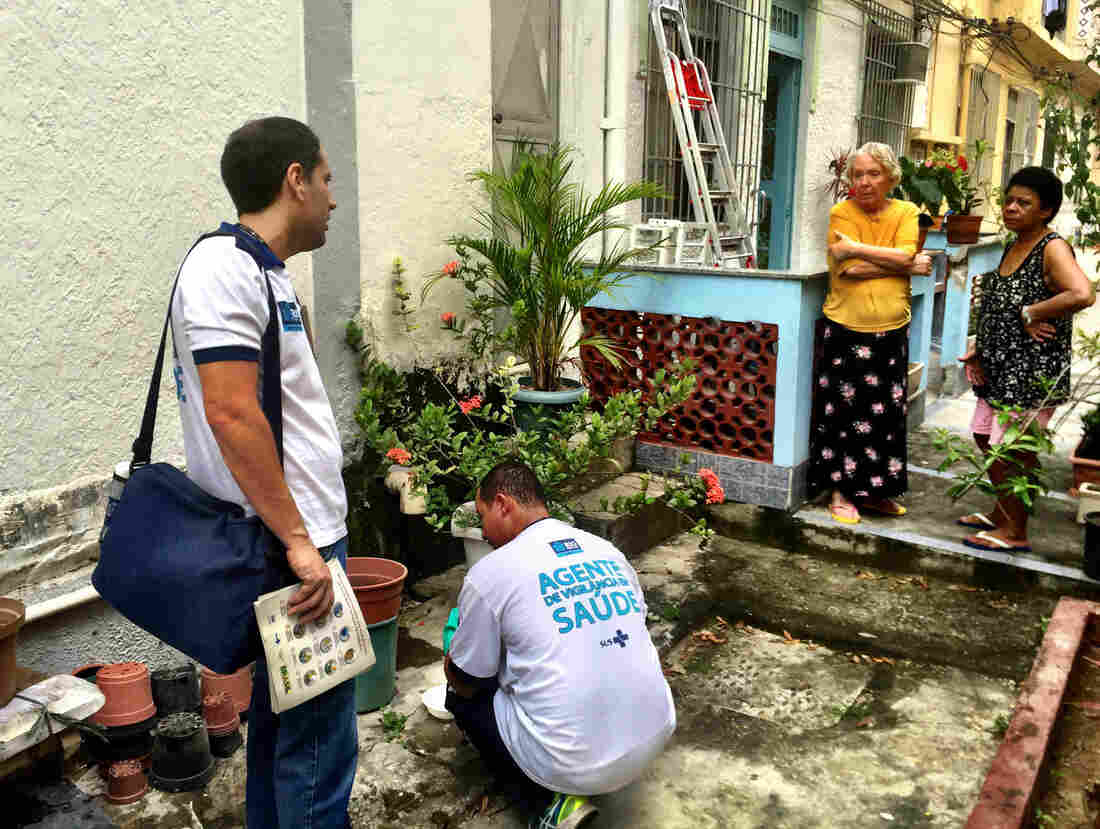 Health inspectors collect samples of mosquito larvae from standing water in a garden in a middle-class neighborhood in the north of Rio de Janeiro. They are searching for places where the Aedes aegypti mosquito breeds — that's the one that carries Zika virus.