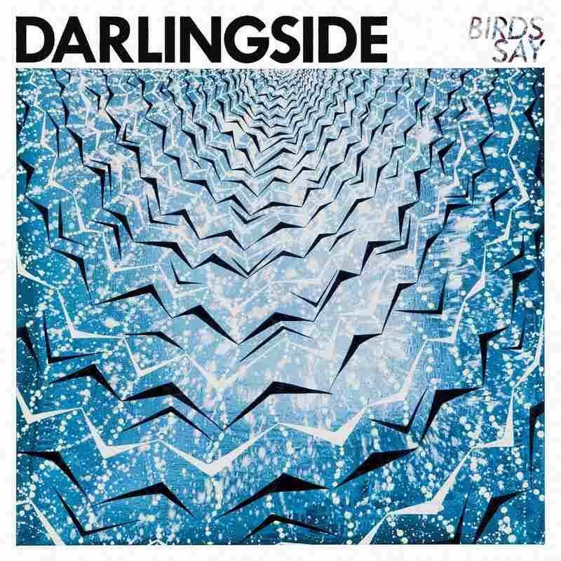 Darlingside, Birds Say