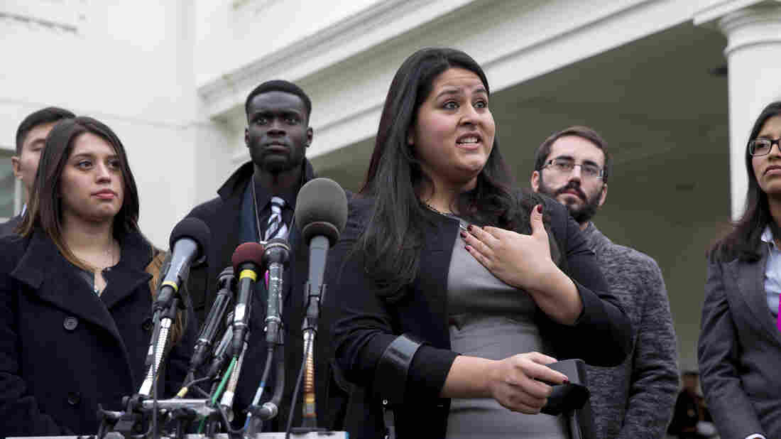 Lorella Praeli speaking to reporters at the White House in Dec. 2014. Praeli, who arrived in the U.S. as an undocumented immigrant, is now a top official in Hillary Clinton's presidential campaign.
