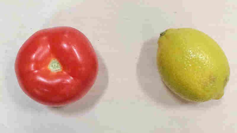 Two ingredients Bush doesn't believe belong in guacamole: tomato and lemon.