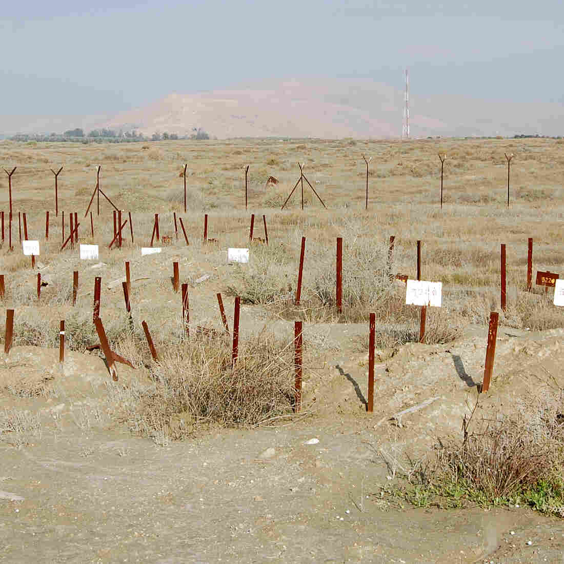 "Known as the ""numbers cemetery,"" this burial ground on an old military base in the off-limits zone close to Israel's border with Jordan holds the remains of some Palestinians."