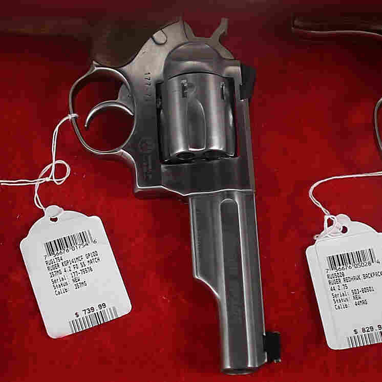 In Campaign For Tougher Gun Laws, Advocates Focus On States
