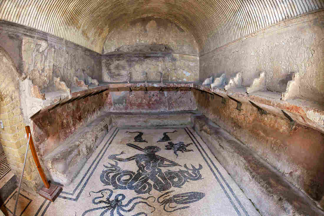 Romans would have gathered in this heated room during a visit to the bathhouse in Herculaneum, in what is now Campania, Italy.