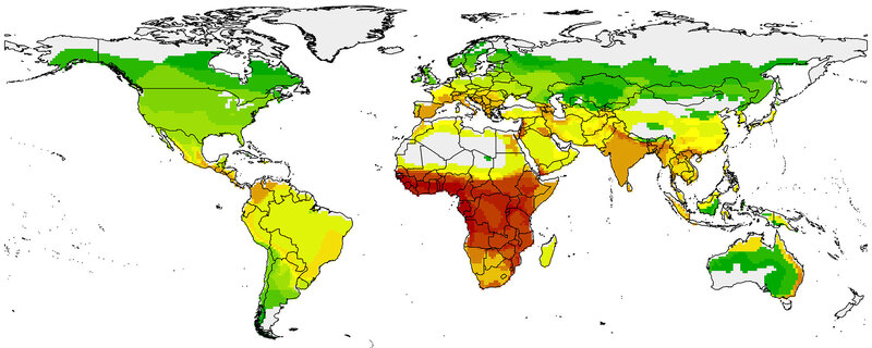The map shows hot spots where the risk is highest for bats passing diseases to humans, based on degree of bat-human contact and number of diseases carried by regional bats. Red is superhot. Green is cool. Yellow is in the middle. (Courtesy The American Naturalist)