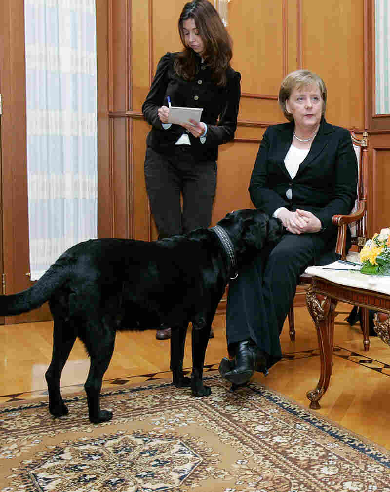"""Putin's Labrador appeared during a meeting in Sochi between Merkel and Putin in January 2007. """"I wanted to make her happy,"""" Putin told Bild. """"When I learned that she does not like dogs, I apologized, of course."""""""