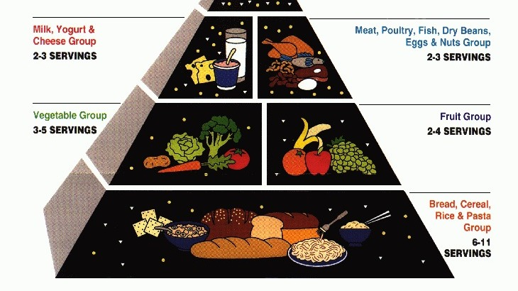 Adult Food Guide Pyramid
