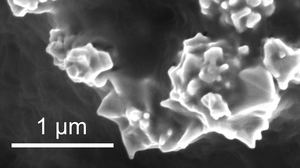 The microstructure of the plastic sheet where the spiky nanoparticles of nickel can be observed.