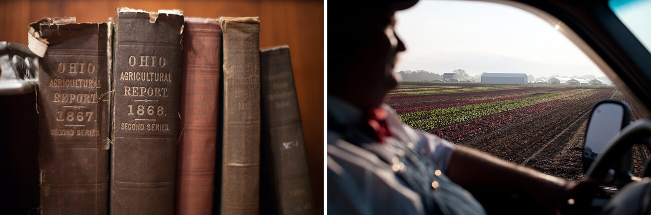 Left, Lee finds unique varieties of vegetables to grow by combing through old agricultural books. And right, Lee surveys a field of lettuce. (Ryan Kellman/NPR)
