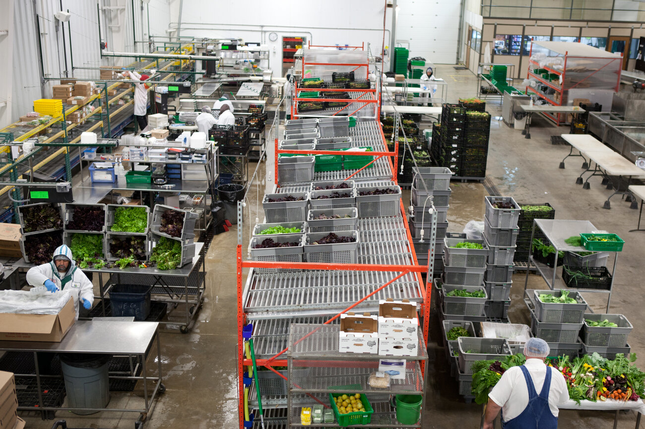 The shipping room at Chef's Garden, where vegetables are carefully washed and packed for their overnight journey to chefs around the country and even abroad. (Ryan Kellman/NPR)