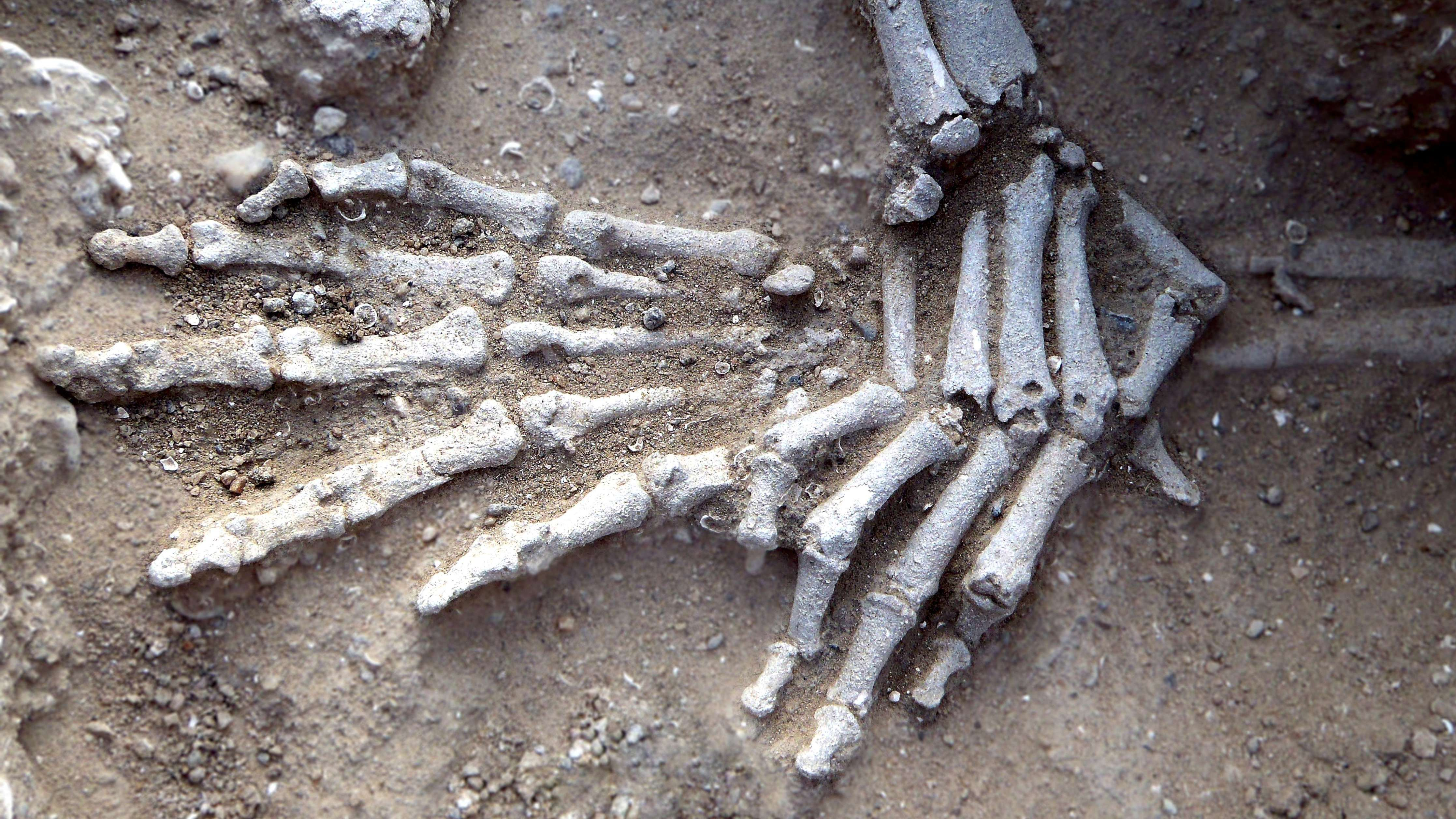 Discovery Of Ancient Massacre Suggests War Predated Settlements