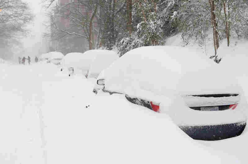Snow-covered cars line a residential street in the northwest of Washington, D.C., on Jan. 23.