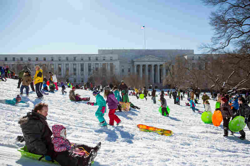 Sledders take over the Capitol in Washington on Sunday.
