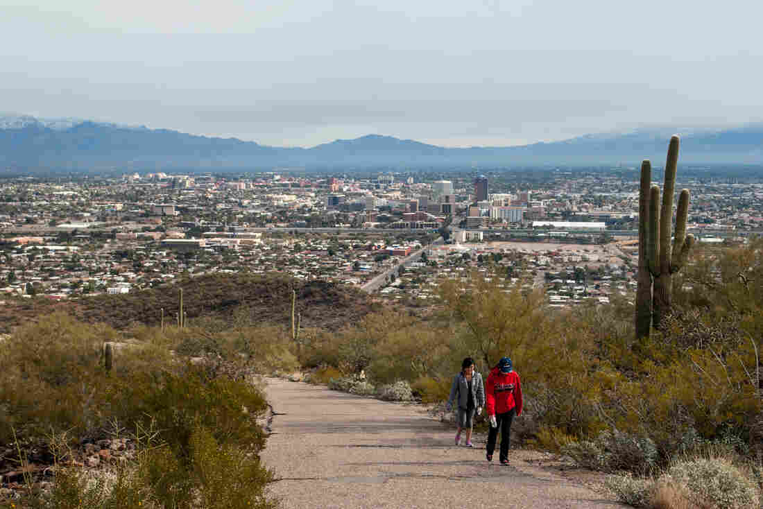 Hikers climb past saguaro cacti on Tumamoc Hill, just west of downtown Tucson. The popular hiking path is trafficked by a far more diverse group of people than neighboring Saguaro National Park.