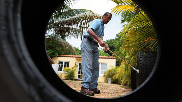 Sporadic dengue fever outbreaks in Florida in 2009 and 2010 spurred mosquito control efforts in Key West and Miami Beach, shown here. The same mosquito that carries dengue, Aedes aegypti, can transmit Zika. (Getty Images)